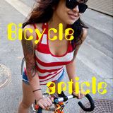 Bicycle article